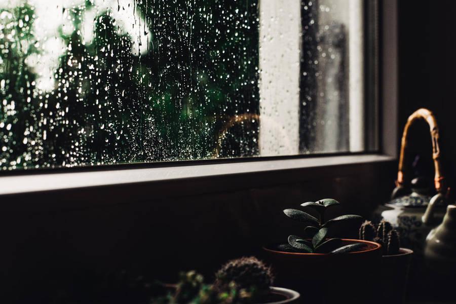a day of rain by Rona-Keller