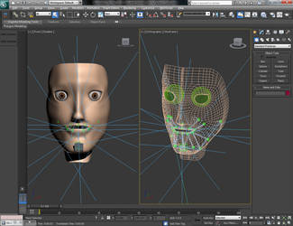 Face Rigging by MaXx-Ownage