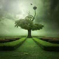 Oak by Alshain4
