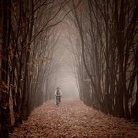 Cycling through the autumn by Alshain4