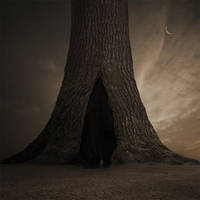 Hidden dream by Alshain4
