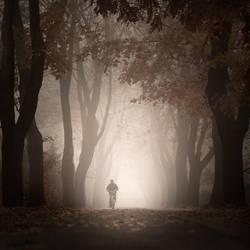 Autumn colours by Alshain4