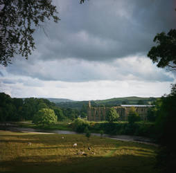 Bolton Abbey by maciek04