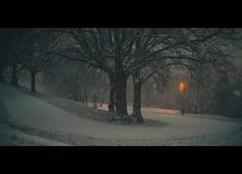 The Cold Arms by maciek04