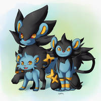 PKMN- Shinx Family by Quarbie