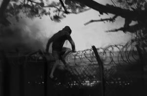 fence by shanyar