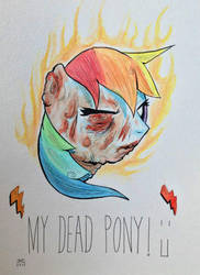My Dead Pony - Rainbow Dash by jeremyg0rd0n