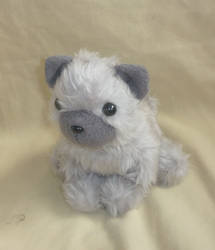 Grey kitty plush : another pic by CyanFox3