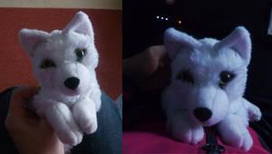 'Lil white wolf: finished by CyanFox3