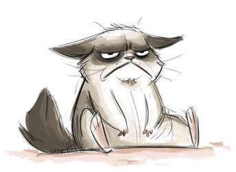 GrumpyCat by sinyx