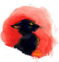 Black Cat by sinyx