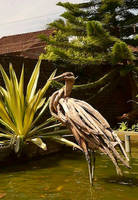 Driftwood Stork Sculpture by ghoff24