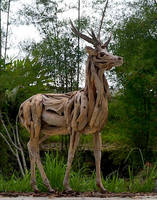 Driftwood Timorese Deer by ghoff24