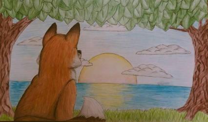 Fox at Sunrise by geckomaster11