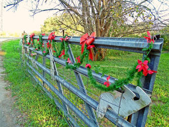 A Texas Christmas Eve by Zena-Xina