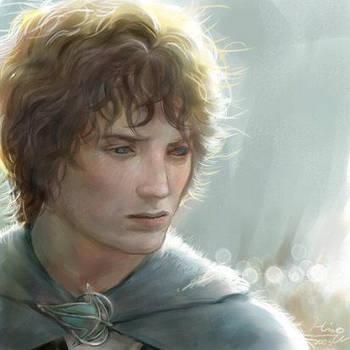 Frodo Baggins by HiroUsuda