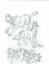 Ivo Sketch Page by Faustenity
