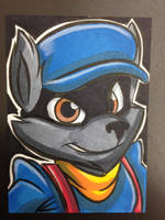 Sly Cooper by joshuadraws