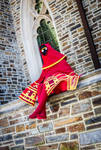 Journey Cosplay phototshoot at Duke Chapel by kwills84