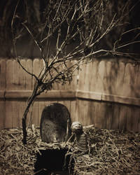 Two Feet in the Grave by OcularFracture