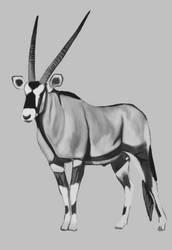 Oryx by Tito-Morales