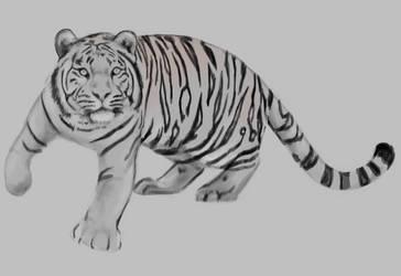 White tiger by Tito-Morales