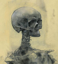 Skeleton Sketch by napoleoman