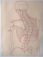 Charcoal and Bone I by napoleoman