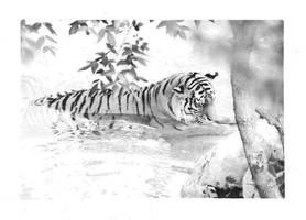 Tiger by superdavej