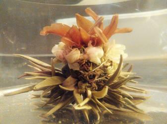 Tea Flower by JakubDivis