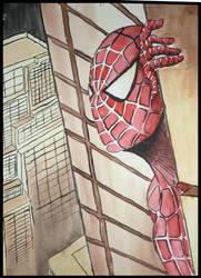 SpiderMan by PetarMKD