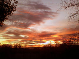 fire in the sky by remousse