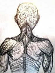 Back Anatomy by Liz-DarkWarrior