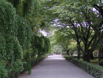 Path by Nigelapatomoto