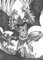 Batman and Robin by CjB-Productions