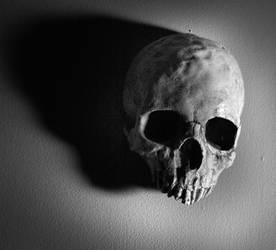 Stock: Skull 5 by TamvakisPhoto