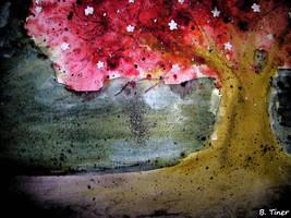 Star Tree by bltshop