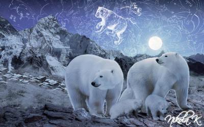 Magical Starry Night of Polar Bears by Nikola096
