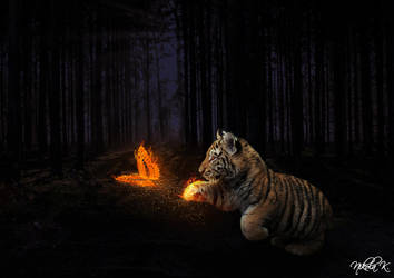 Tiger Cub and Fire Butterfly by Nikola096