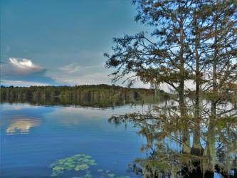 Lake softness by Naturevulpex