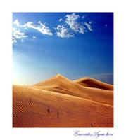 Rays by EmiratesSignature