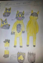 Muffin the wolf reference sheet by Bigw-Gamer-Dude