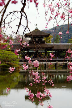 Garden of the Heian-Shrine by LunaFeles