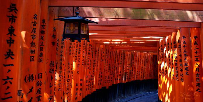 Fushimi Inari 02 by LunaFeles