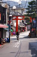 streets of Kyoto - Fushimi Inari 04 by LunaFeles