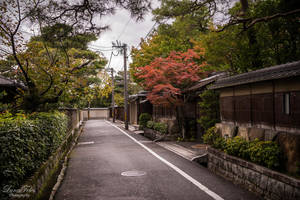 streets of Kyoto by LunaFeles