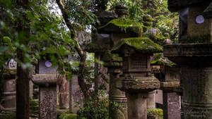Lanterns in Nara by LunaFeles