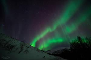 aurora borealis. by LunaFeles