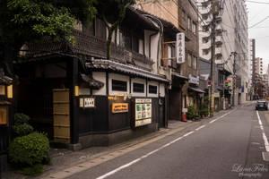 streets of Fukuoka by LunaFeles