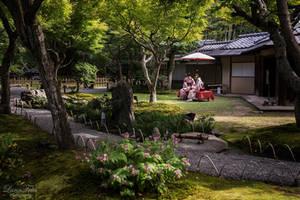 Garden of Kodai-ji by LunaFeles